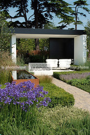 Terrasse contemporaine sous pergola en béton. Fauteuil Bibendum (collection Eileen Gray). Agapanthus africanus 'Tom Thumb', B...