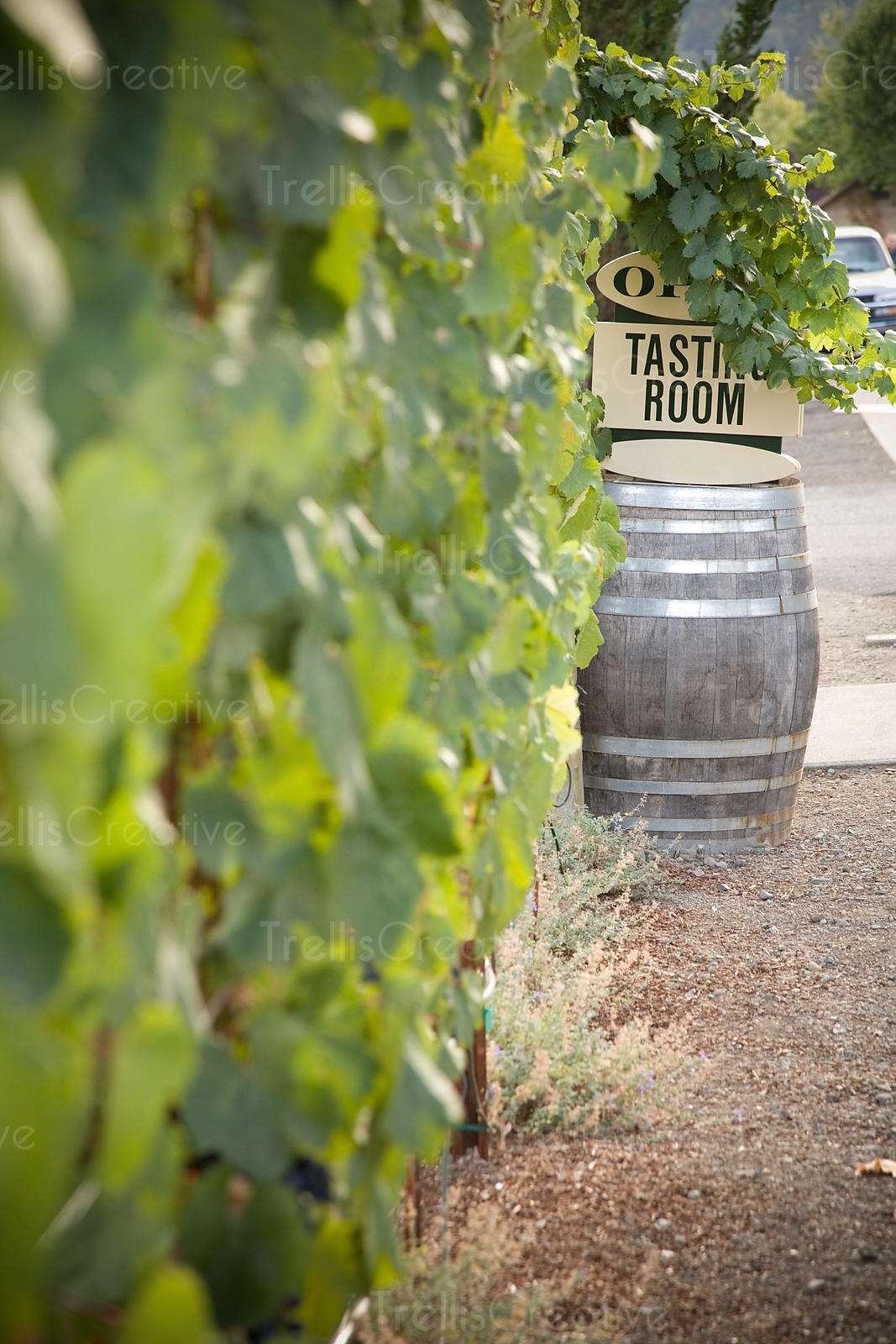 An oak barrel with a sign that reads tasting room sits outside of a winery