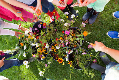 Reportage in pluktuin met kinder party, bloempot verven, bloemen kiezen, knippen en schikken. This feature is for sale. Conta...