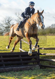 Clare Bell jumping a fence at Cream Gorse - The Quorn at Cream Gorse Farm