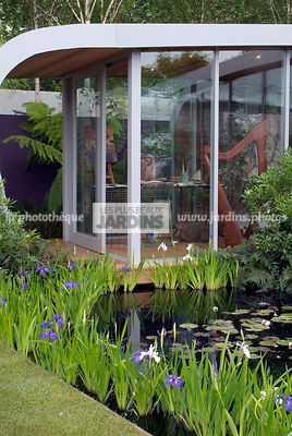 Aquatic garden, Aquatic Iris, Contemporary garden, Iris pseudacorus, Pool, Water Iris, Digital, Summer, Veranda