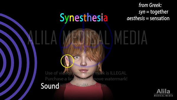 Synesthesia NARRATED animation