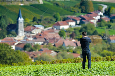 Photographer in action, in Champagne vineyards