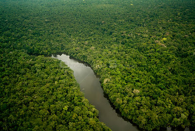 Aerial view of Lago Preto, Amazon Rainforest and lake, Peru