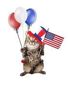 Fourth Of July Cat With Balloons and Flag