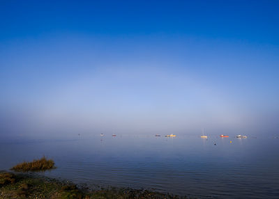 Fog_at_Hengistbury_200