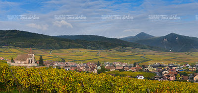Hunawihr, Alsace Vineyard, France