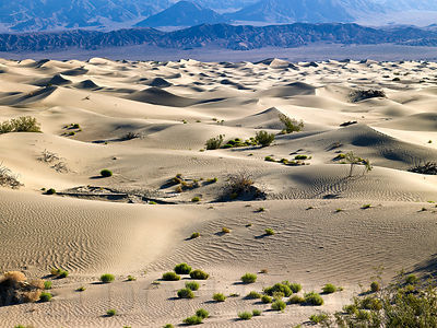Death_Valley_May2010_153