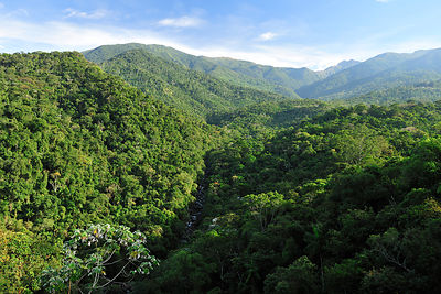 Aerial view of the Atlantic rainforest of Itatiaia National Park, Rio de Janeiro State, Southeastern Brazil, July 2011
