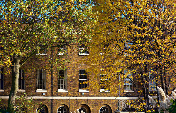 Wapping Pierhead in Autumn