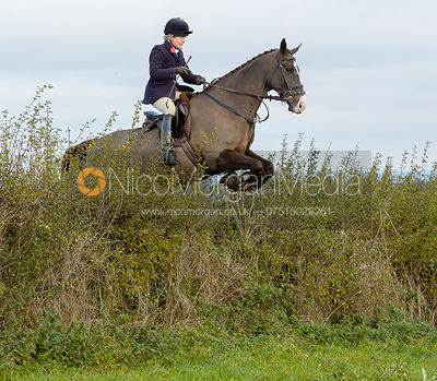 Katie Robinson jumping a hedge near Clawson Thorns