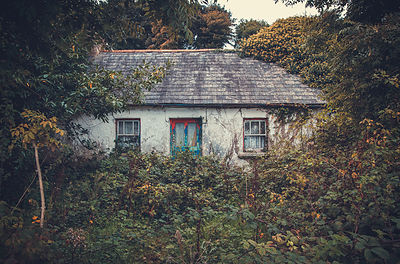 Ab_house_Waterford_30092016