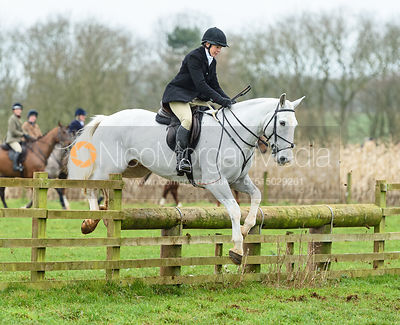 Michael Elson jumping a fence at Goadby Marwood 11/1