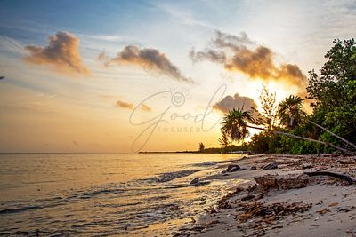 Golden Sunrise on Cozumel Beach