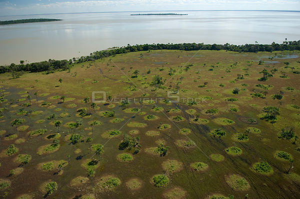 Aerial view of the banks of Lake Rogaguado during the flood season, in the region of the great lakes of the Northern Beni Dep...