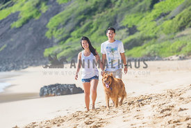 Youngle couple walking with Golden Retriver