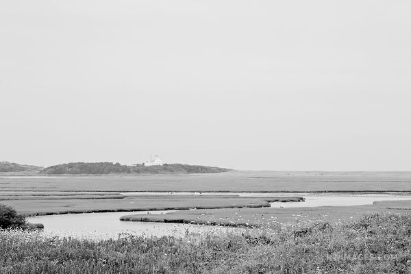 MARSHES FORT HILL TRAIL EASTHAM CAPE  COD MASSACHUSETTS BLACK AND WHITE