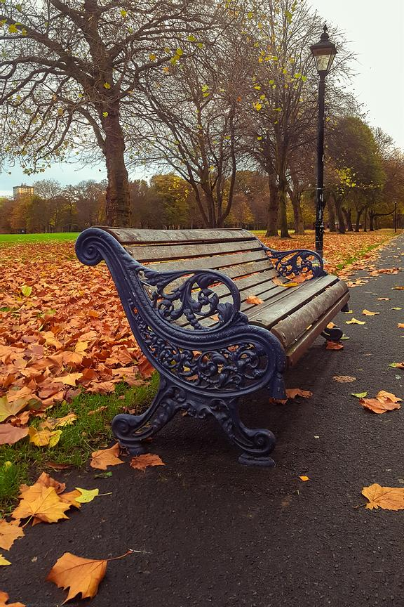 Bench of Seasons
