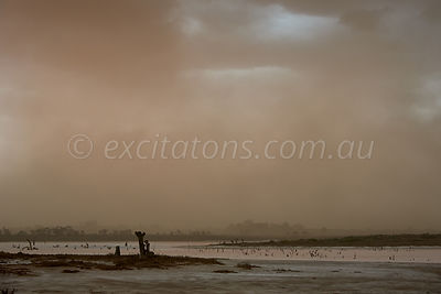 Dust-Storm-Salt-Lake