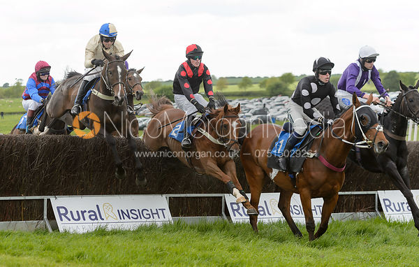 Race 6 - The Melton Hunt Club Point-to-Point 2017