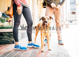mixed breed standing downtown with athletic man and woman