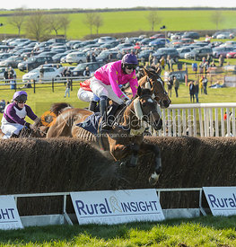 Race 5 Restricted - The Belvoir Point-to-point 2017