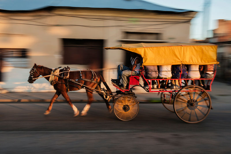 Horse and Buggy Taxi on the Move at Sunset