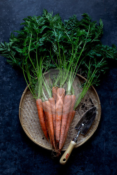 Fresh ripe carrots on a work surface