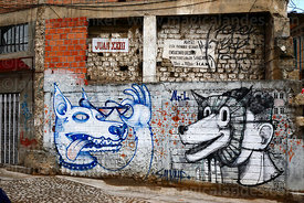 Unusual wolf / dog head street art /  graffiti on wall, La Paz, Bolivia