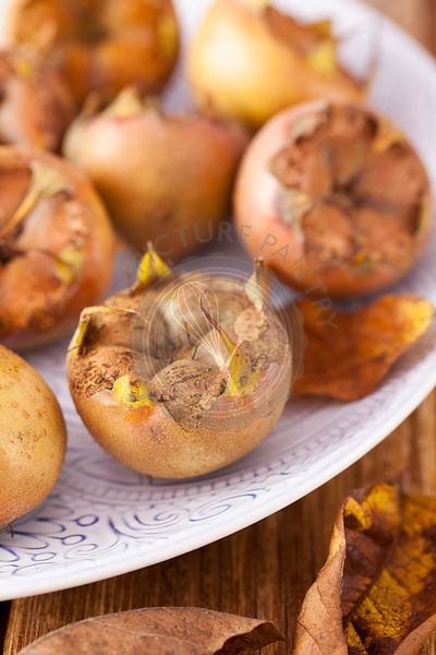 Medlars on Patterened Plate