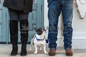 French bulldog with man and woman