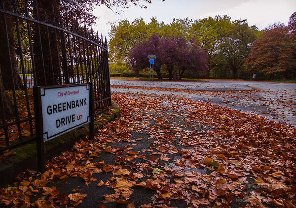 Autumn at Greenbank Drive