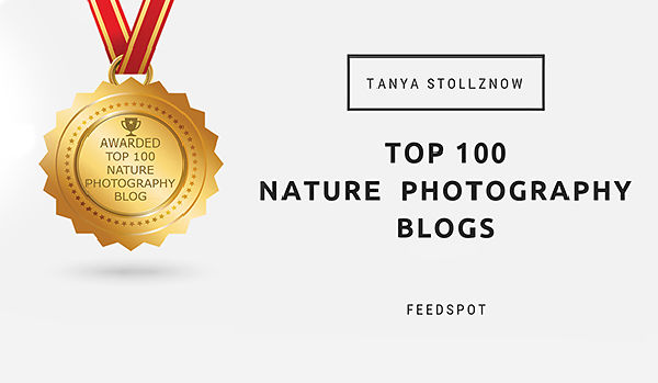 Top 100 Nature Photography Blogs