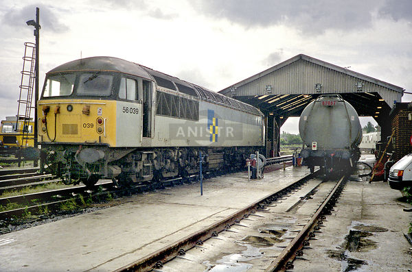 Diesel loco Class 56 56039  Hither Green