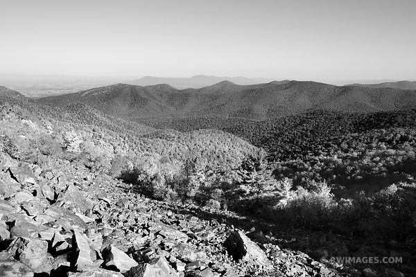 BLACK ROCK SUMMIT SHENANDOAH NATIONAL PARK VIRGINIA BLACK AND WHITE
