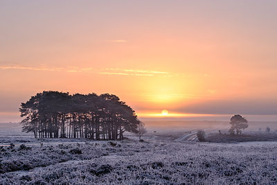 Frosty_sunrise_-_Beaulieu_Road