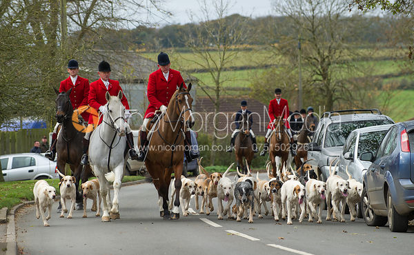Huntsman Peter Collins and the Quorn Hounds - The Quorn Hunt at John O' Gaunt 9/11/12