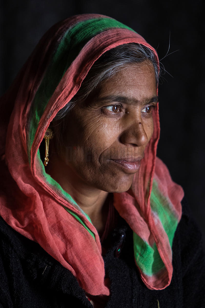 Portrait of a Marwari Woman