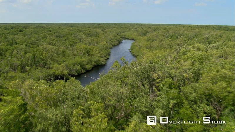 Flight along a tree-lined Florida river
