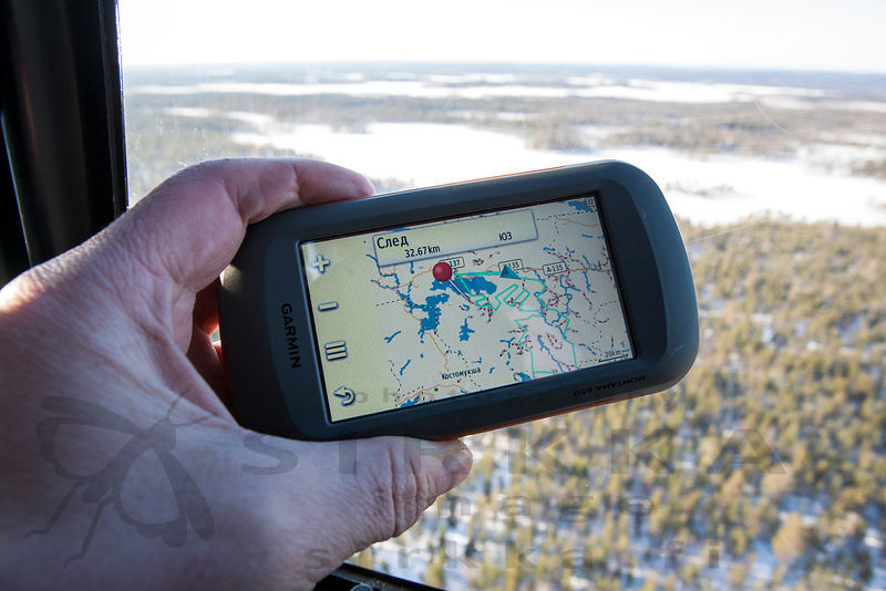 Aerial Survey of Wild Forest Reindeers in Russian Carelia