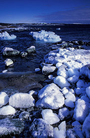 Ice-Covered Boulders at Coast