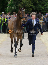 Ludwig Svennerstal and ALEXANDER - First Horse Inspection, Mitsubishi Motors Badminton Horse Trials 2014