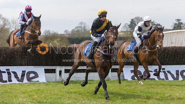 Popaway (Joe Docker), The Members Race - The Quorn at Garthorpe 21st April 2013.
