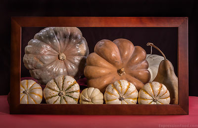 Family Heirloom Portrait: Pumpkins
