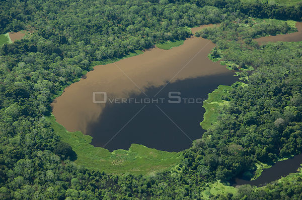 "Aerial view of Amazon ""várzea"" rainforest of Mamoré River, during the great 2008 flood, to the North of Trinidad city, in the..."