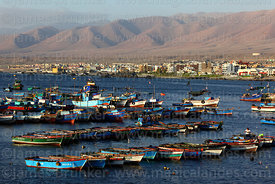 Fishing boats moored in port, Ilo, Peru