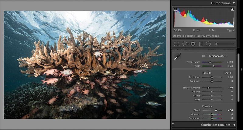 The post processing of an underwater photo: second part
