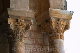 A couple the 400 odd Roman columns from Carthage and Sousse used for the colonade oft he Grand Mosque. Kairouan, Tunisia; Lan...