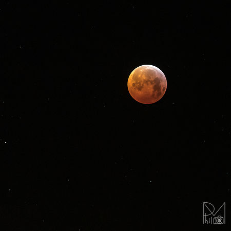 Blood moon !