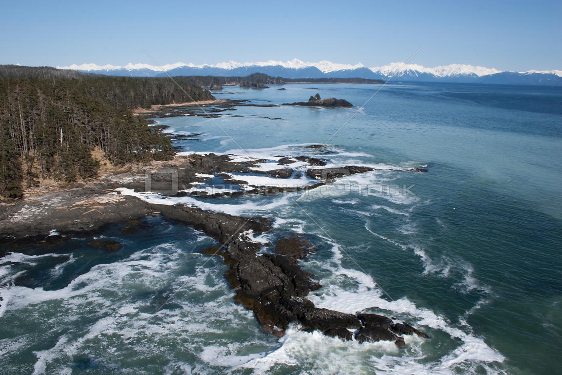 Aerial view of coastline near Sitka, sea covered in Pacific herring (Clupea pallasii) spawn, South East Alaska, USA, March 2007